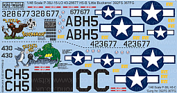 Kitsworld Kitsworld  - 1/48 Scale Decal Sheet P-38 Lightnings