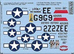 Kitsworld Kitsworld 1/72 Scale Decal Sheet P-47 Thunderbolts KW172052